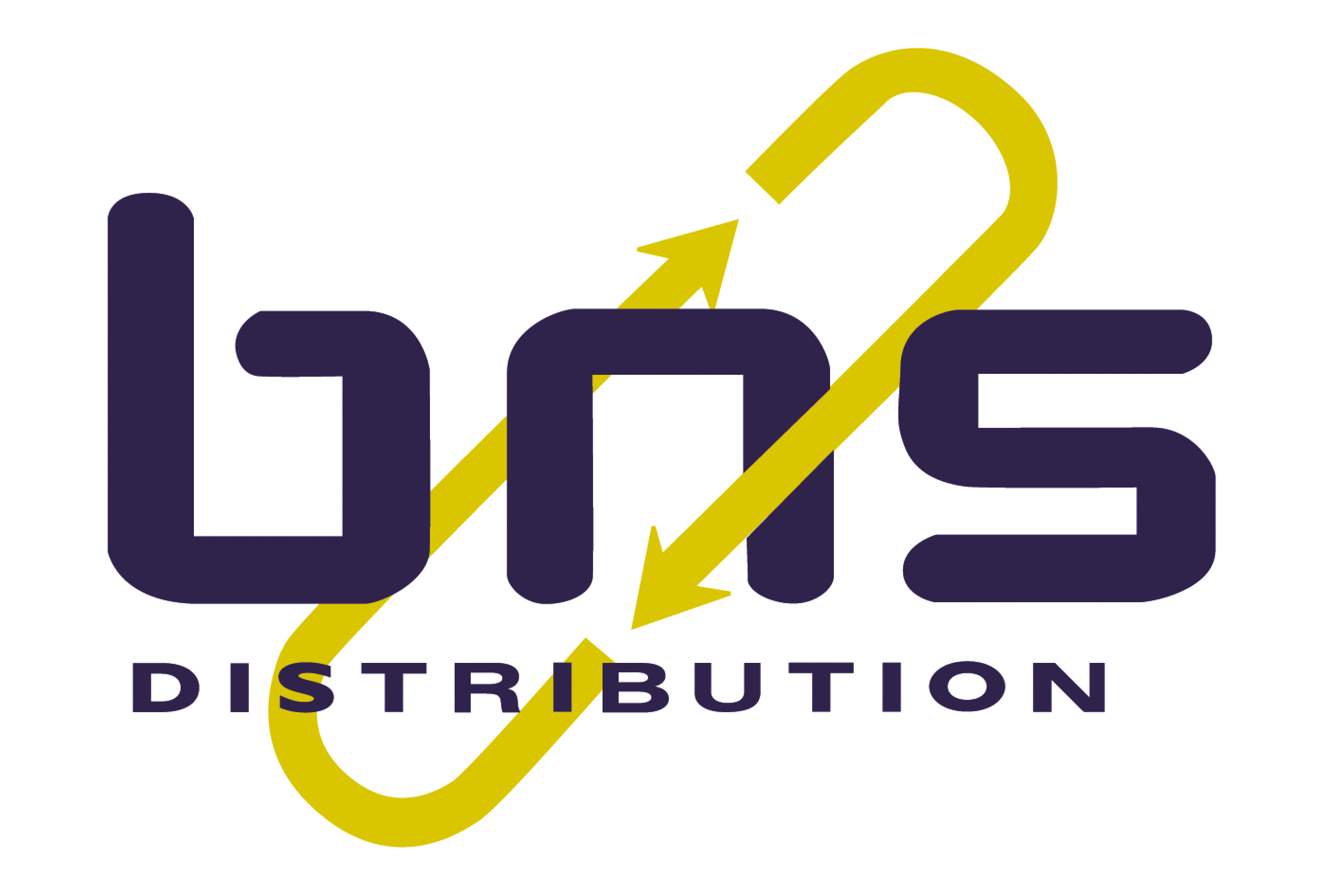 Bns distribution logo jpeg